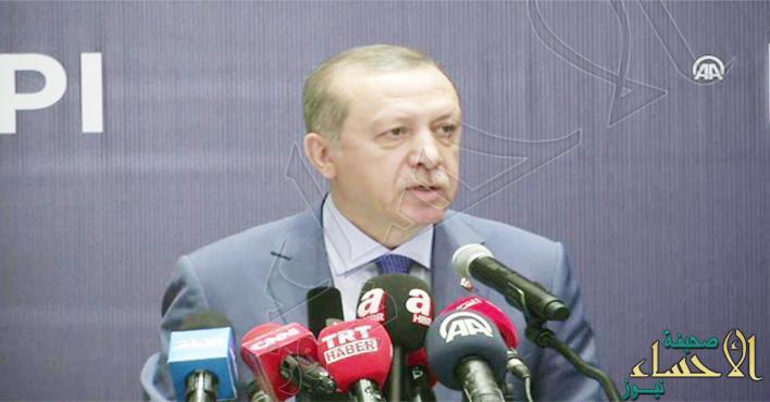 الرئيس التركي: الهدف إقامة منطقة آمنة داخل سوريا بعد عملية الرقة