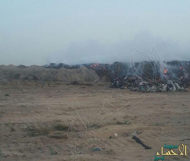 ⛔️ بالصور.. هجرة سودة في مرمى النفايات وسط صمت الجهات !!