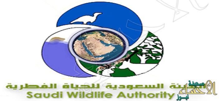 على بند 105… الهيئة السعودية للحياة الفطرية تعلن عن توفر وظائف شاغرة