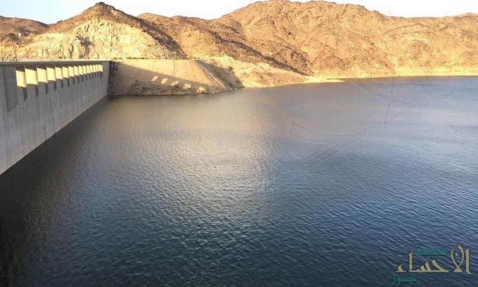 «الزراعة»: العمل على بناء سدود مياه جديدة متعددة الأغراض