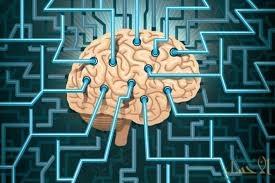دراسة: الزهايمر يبدأ خارج المخ ويتكون داخل الكلى والكبد