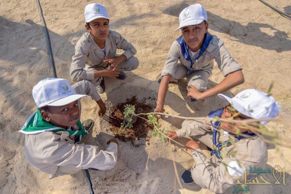 """بالصور… المؤسسة العامة للري ومُديرية الزراعة تُطلقان مبادرة تشجير """"غابة جواثا"""""""