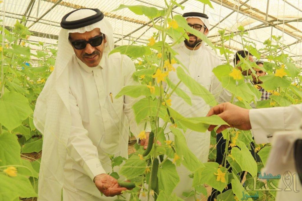 """بالصور.. """"الحسيني"""" يفتتح يوم حقلي بعنوان """"تعزيز ثقافة التنوع الزراعي بالأحساء"""""""
