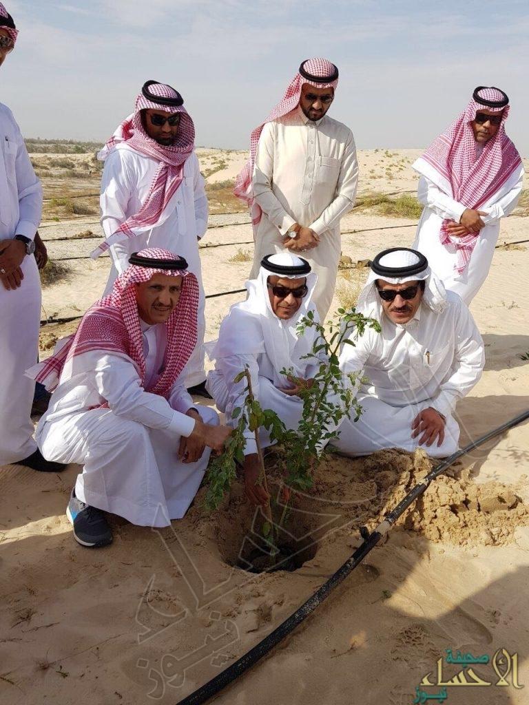 """بالصور…""""آل الشيخ مبارك"""" يغرس الشجرة رقم ١٠ آلاف بغابة جواثا"""