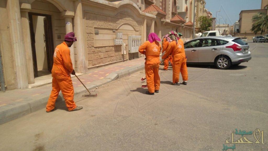 """لتحسين المشهد الحضري.. برنامج توعوي للحفاظ على نظافة """"الجبيل"""""""