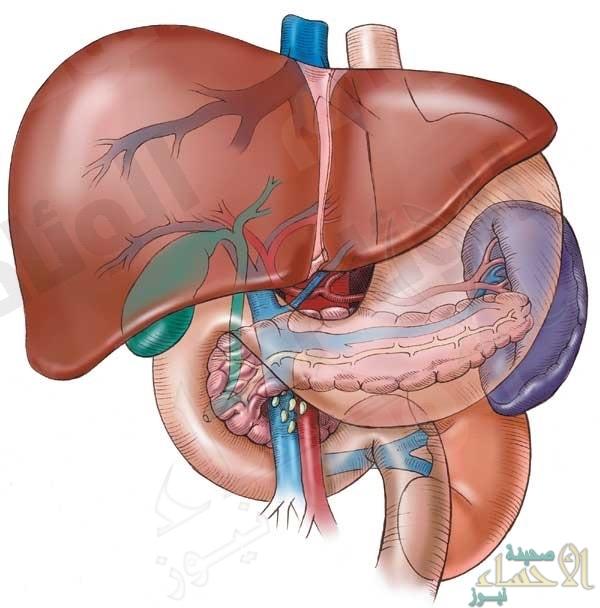 علماء يطمئنون مرضى تليف الكبد .. عقار يغني عن الزراعة