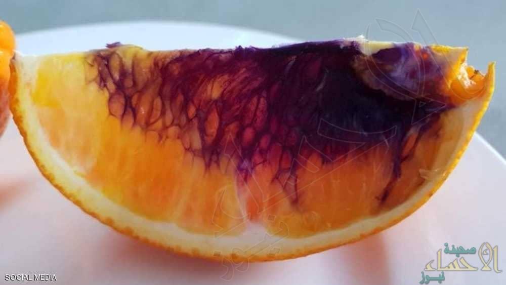 """العلماء في حيرة.. البرتقال يتحول """"أرجوانيا"""" في ساعات !!"""