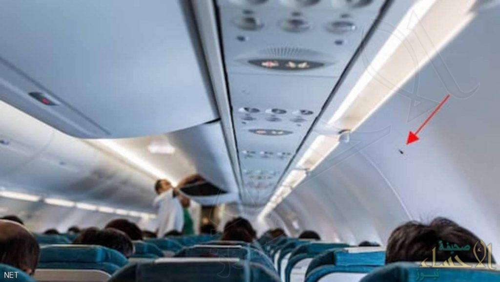 """عند """"المثلث الأسود"""".. أهم مقعد على الطائرة"""