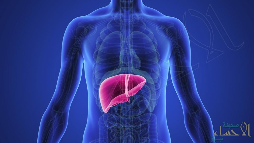 """8 عوامل قد تكون سببًا في تدمير """"الكبد"""" .. تعرّف عليها"""