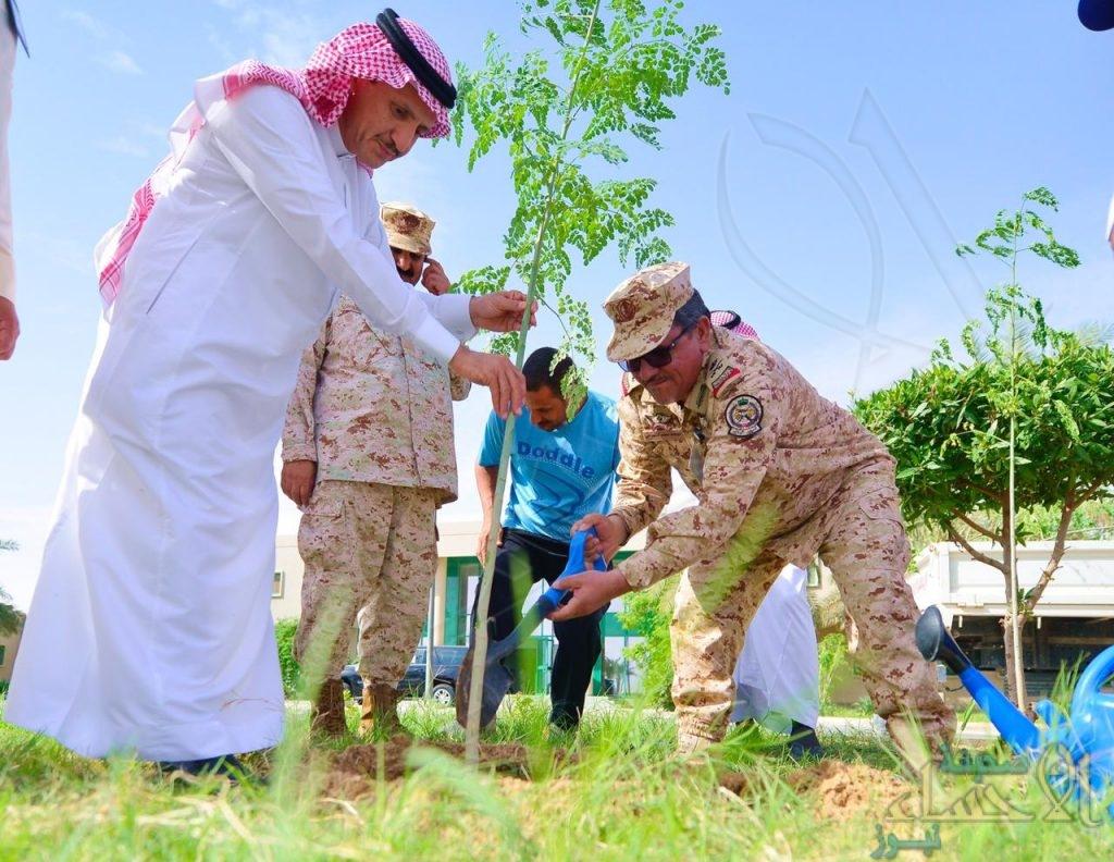 """""""الري"""" تُطلق المرحلة الأولى من تشجير """"لواء الملك عبدالله"""" بن عبدالعزيز الآلي"""