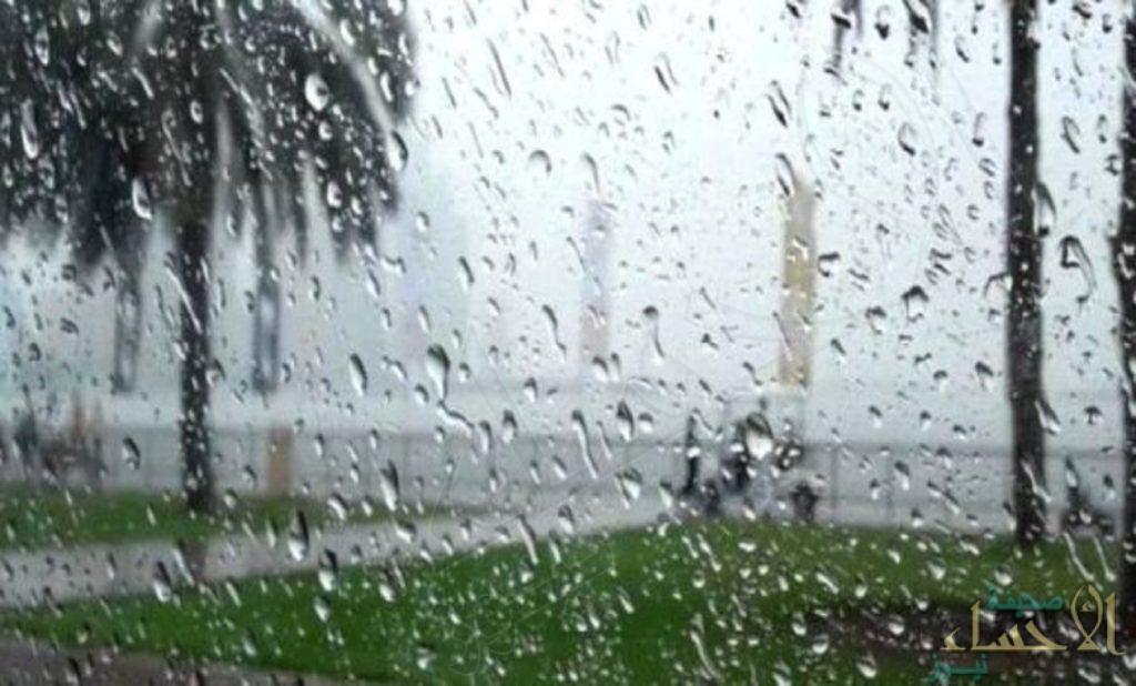 الأرصاد: أمطار متفرقة وموجة باردة على 5 مناطق بالمملكة.. الجمعة