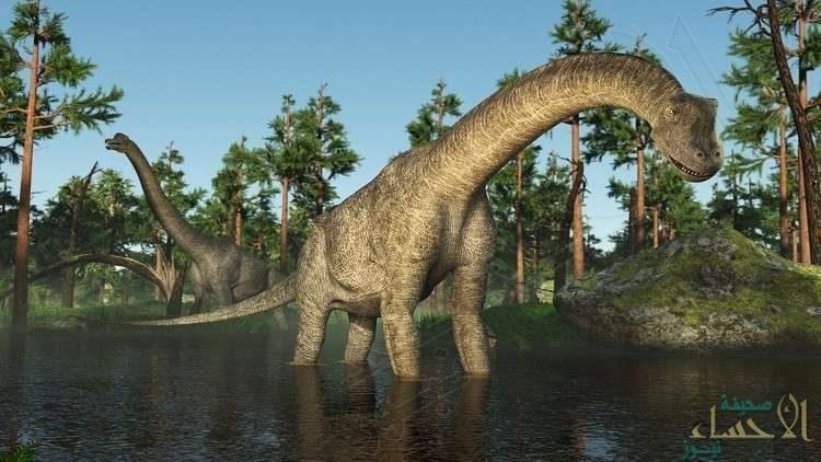 """""""معدن الديناصورات"""" يقضي على أكثر السرطانات فتكا"""