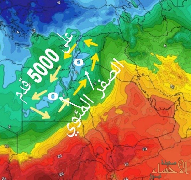 """""""كراني"""": هذه المناطق تستقبل الزائر القطبي الأبيض.. وبشائر خير خلال 48 ساعة"""