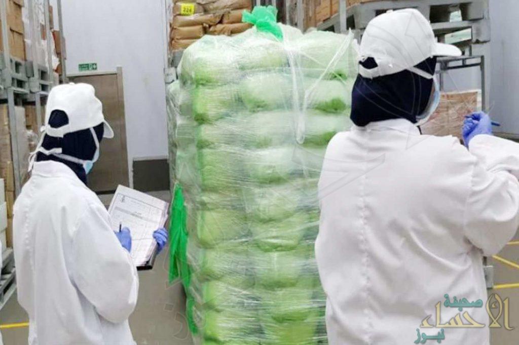 160 مفتشة تنضم لحماية البيئة السعودية