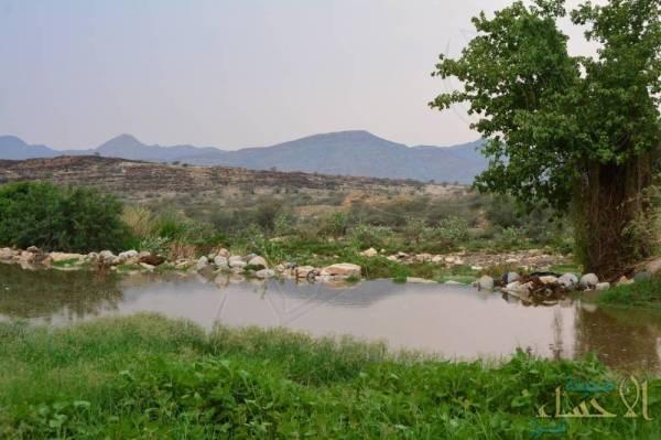 """الأرصاد: مناطق يضربها """"الغبار"""".. وأخرى ترويها """"الأمطار"""" .. تعرف عليها"""