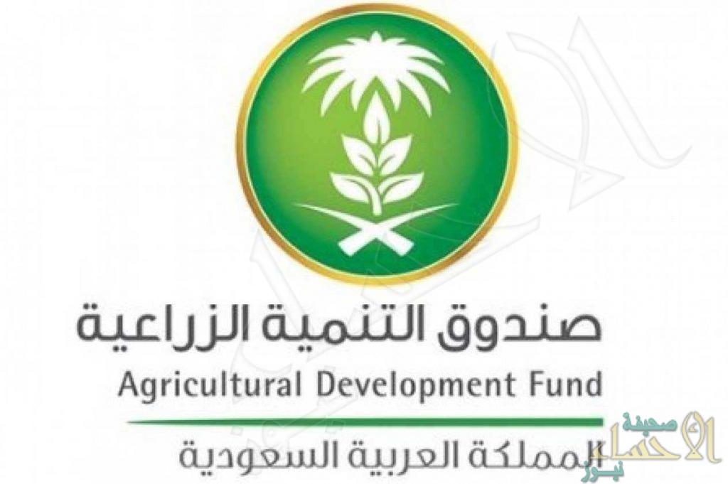 """""""التنمية الزراعية"""": 614 مليون ريال لـ3 قطاعات إنتاجية"""
