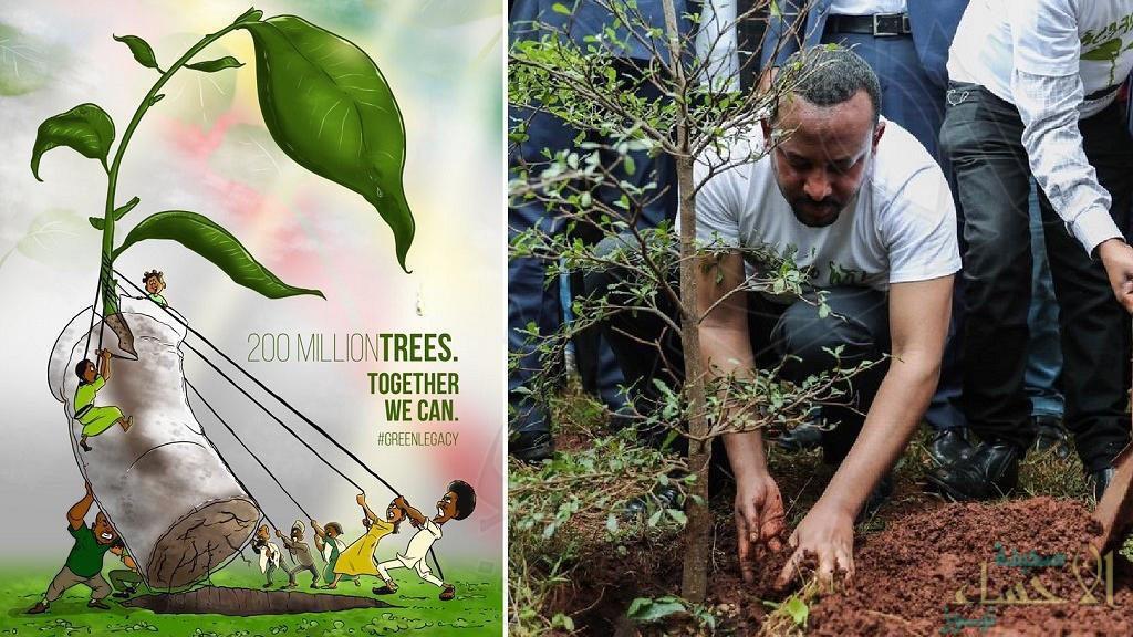 """350 مليون شجرة في يوم واحد فقط !! .. """"إثيوبيا"""" تُسجل رقمًا قياسيًا لمكافحة تغير المناخ"""