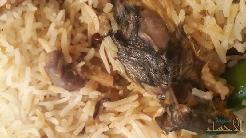"""بالصور … مواطن يعثر على """"فأر مطبوخ"""" داخل وجبة أحد المطاعم !!"""