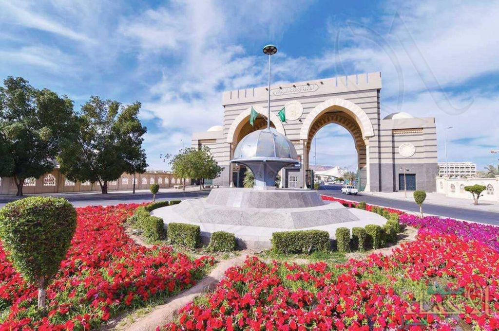 الجامعة الإسلامية تفتح باب القبول لمرحلة الدبلوم في 11 تخصصًا بعد الثانوية