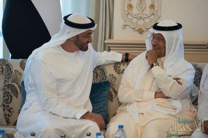 وزير الطاقة يبحث مع محمد بن زايد علاقات البلدين والتعاون والتنسيق المشترك