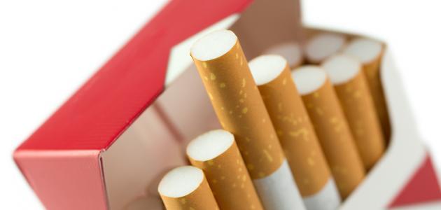 """""""الجمارك"""": سيُسمح لكل شخص بإدخال 100 علبة من السجائر أو 10 كروز"""
