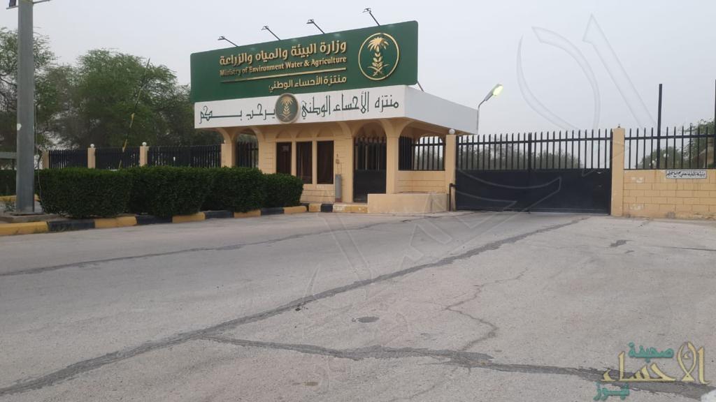 """إعادة فتح """"منتزه الأحساء الوطني"""" بعد إغلاقه مؤقتًا لمكافحة الجراد"""
