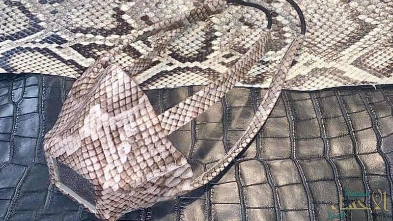 كمامات من جلود الثعابين تثير غضب الأمريكيين!!
