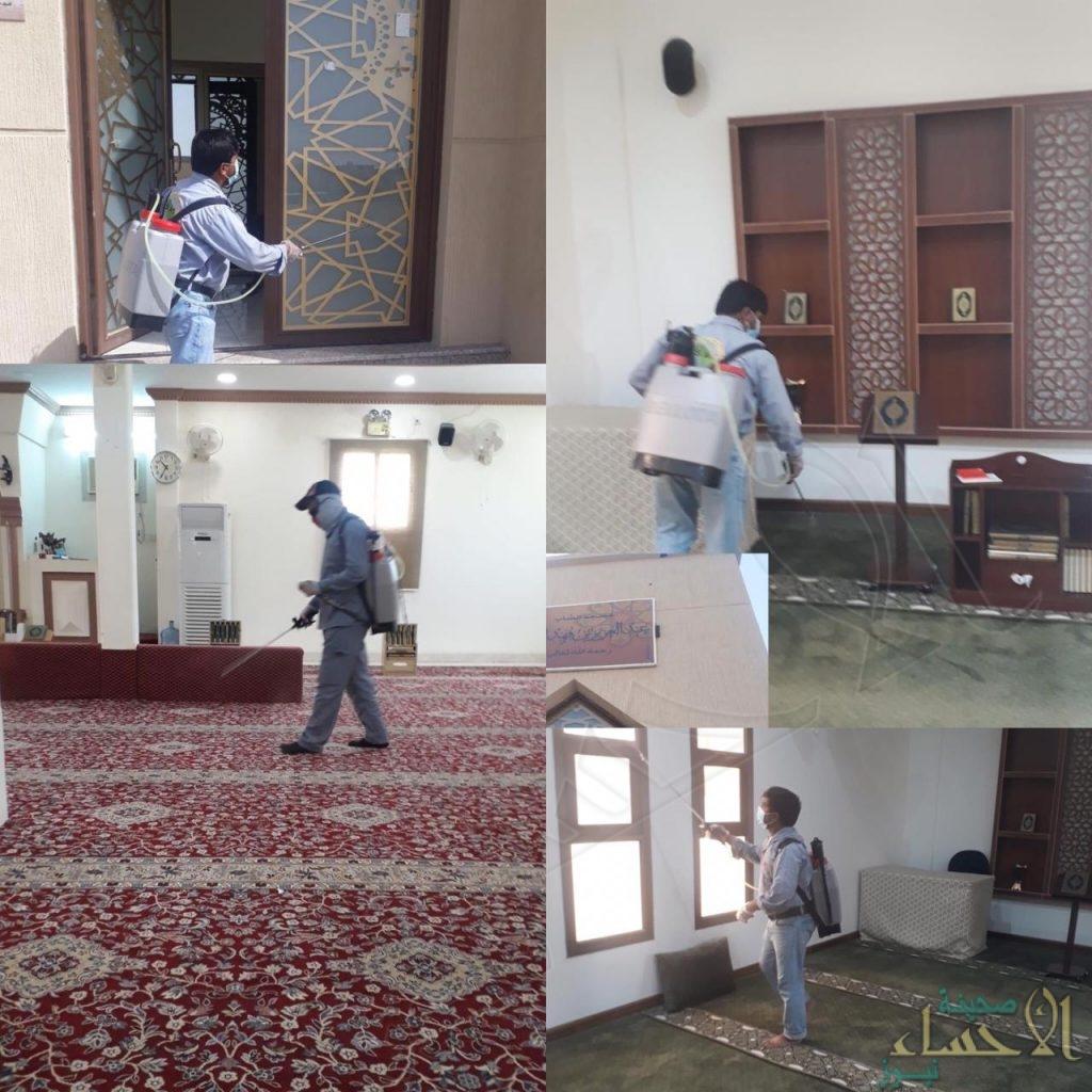"""بالصور.. """"الشؤون الإسلامية"""" تكشف لـ""""الأحساء نيوز"""" استعداداتها لفتح المساجد في الأحساء"""