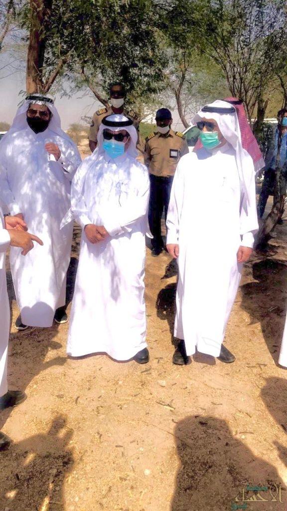 جامعة الملك فيصل تغرس 45ألف شجرة في واحة الاحساء