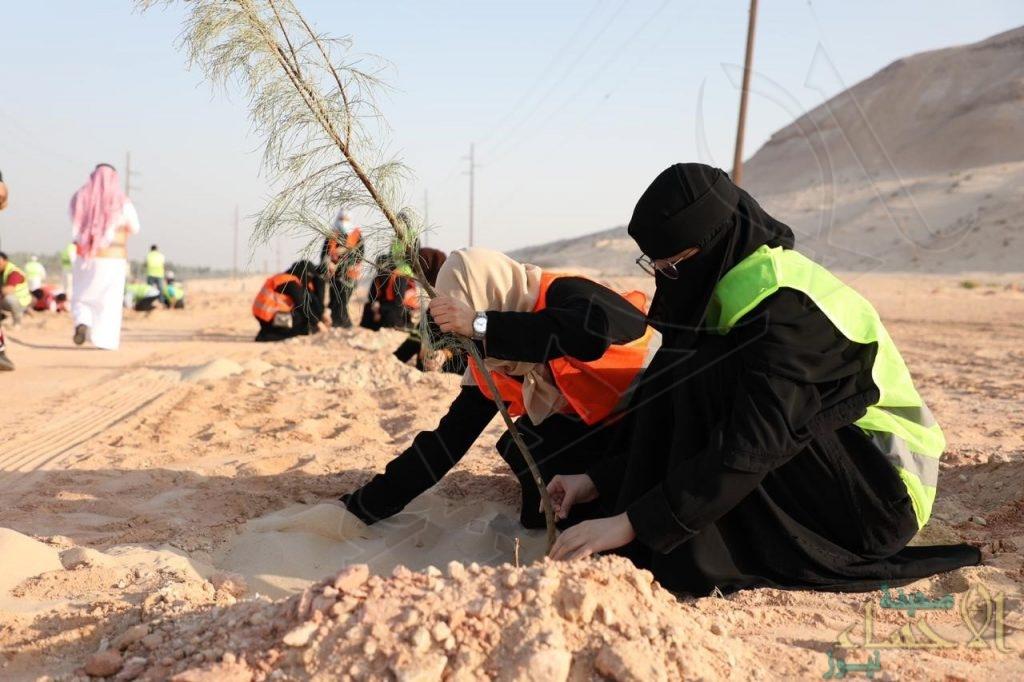 """بالصور .. أمانة الأحساء تُفعّل """"عالمي التطوع"""" بـ""""20″ مبادرة بلدية"""