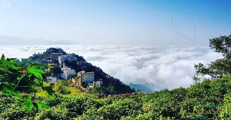 الشورى يطالب بإتاحة فرص استثمارية في المناطق الجبلية والسهول وساحل البحر الأحمر