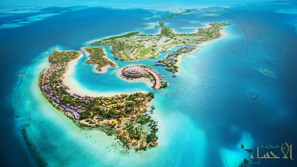 ولي العهد يُطلق الرؤية التصميمية كورال بلوم للجزيرة الرئيسية بمشروع البحر الأحمر (صور)