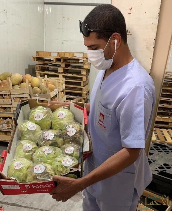 """أمانة الأحساء تُتلف 7.5 طن """" أغذية فاسدة """" وترفع 180 رأساً من """"المواشي النافقة"""" (صور)"""