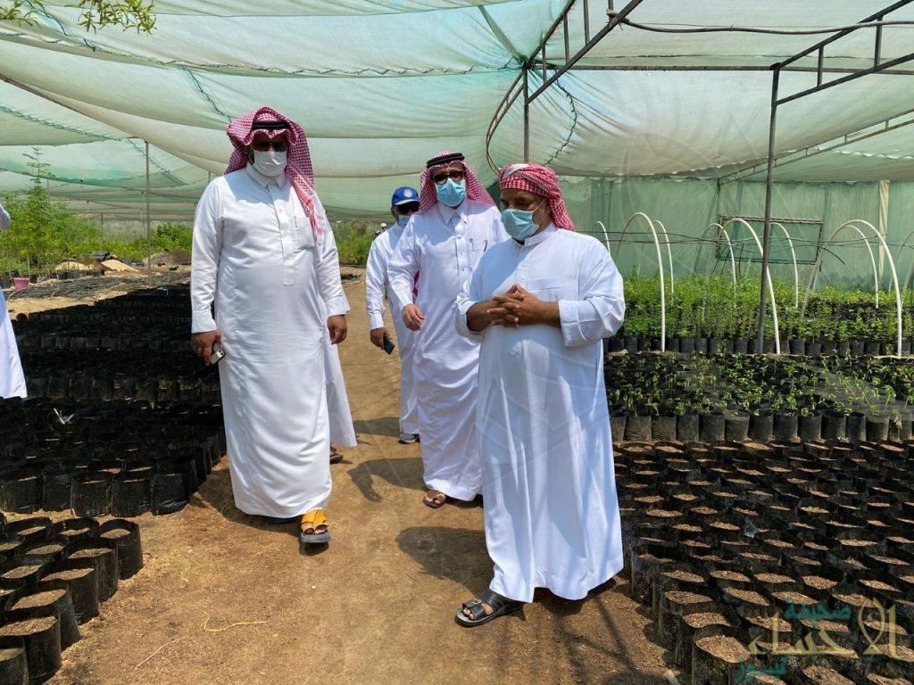 """مدير مكتب """"وزارة الزراعة"""" بالقطيف يواصل جولاتة التفقدية على المشاتل الزراعية"""