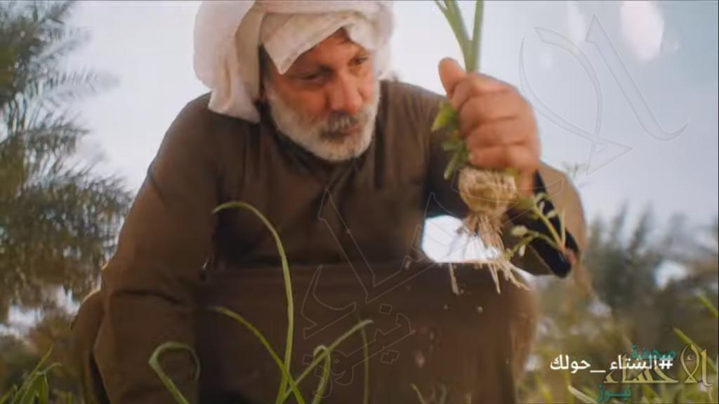 """الفيلم السعودي """"مذاق الأحساء"""" لـ """"روح السعودية"""" يفوز بجائزة عالمية (فيديو)"""