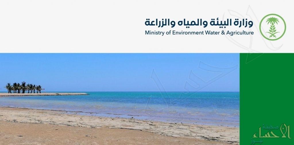 """""""وزارة البيئة"""" تُعلن: بدء تطبيق اللائحة التنفيذية لإدارة البيئة البحرية والساحلية في المملكة (إنفوجراف)"""